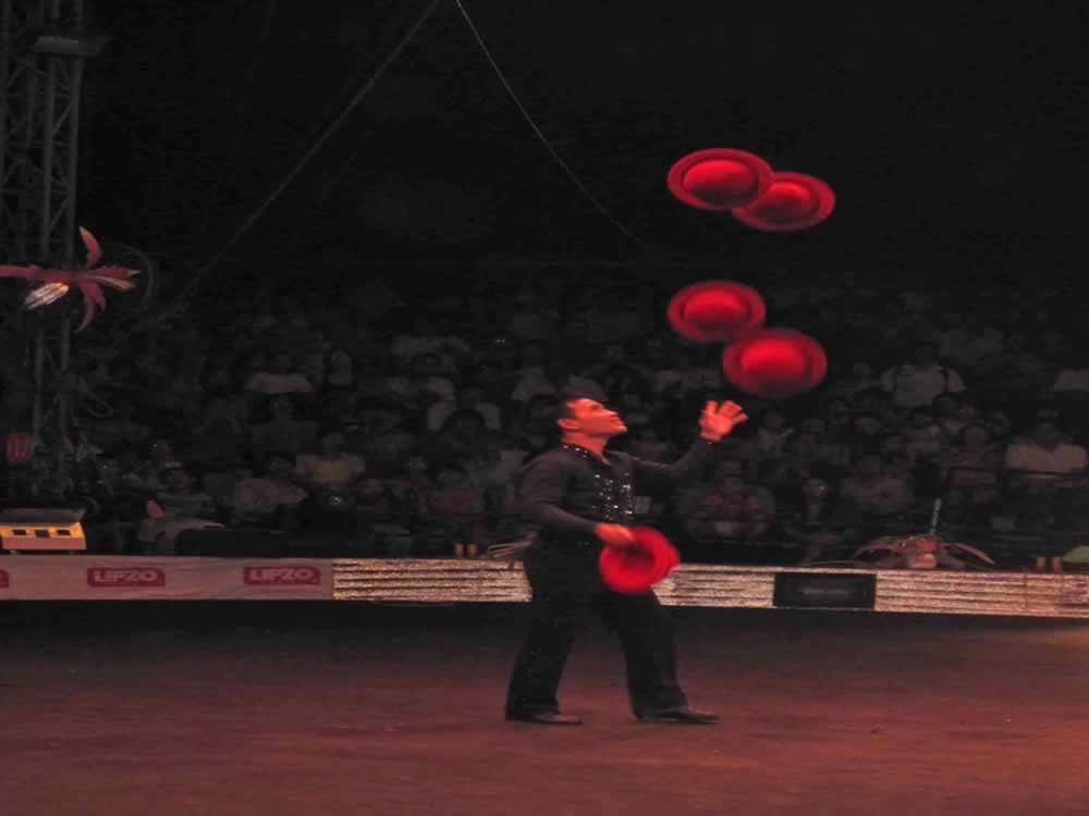 IMG 8163 circus gala