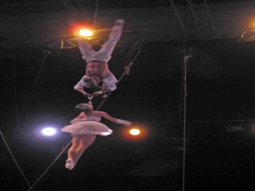 IMG 8176 circus gala
