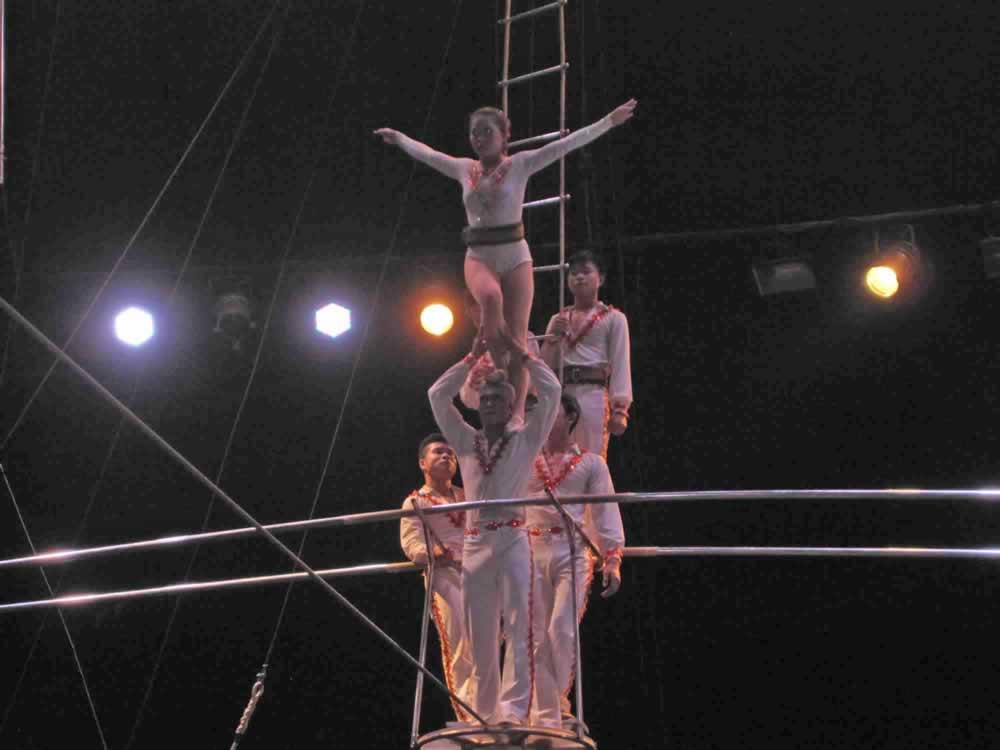 IMG 8183 circus gala