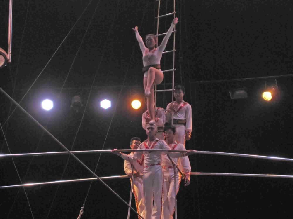 IMG 8184 circus gala