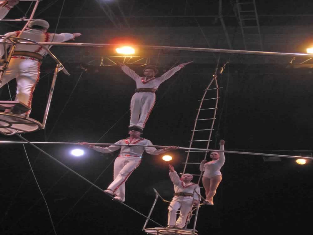 IMG 8186 circus gala