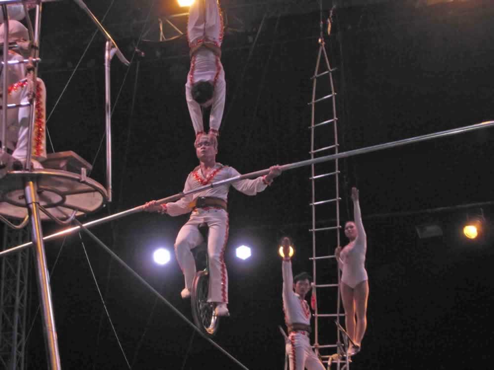 IMG 8187 circus gala