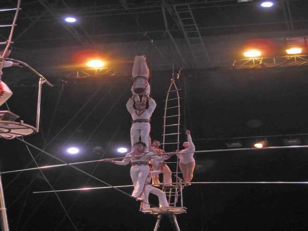 IMG 8188 circus gala