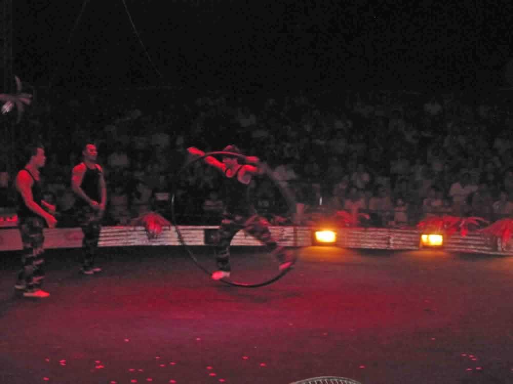 IMG 8193 circus gala