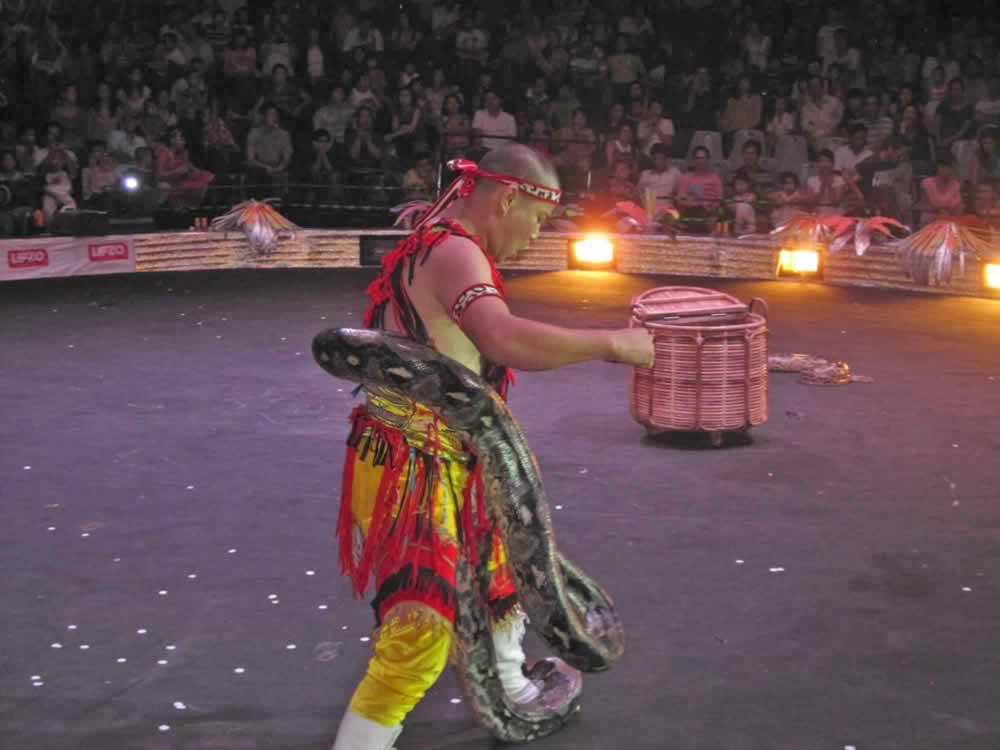 IMG 8198 circus gala