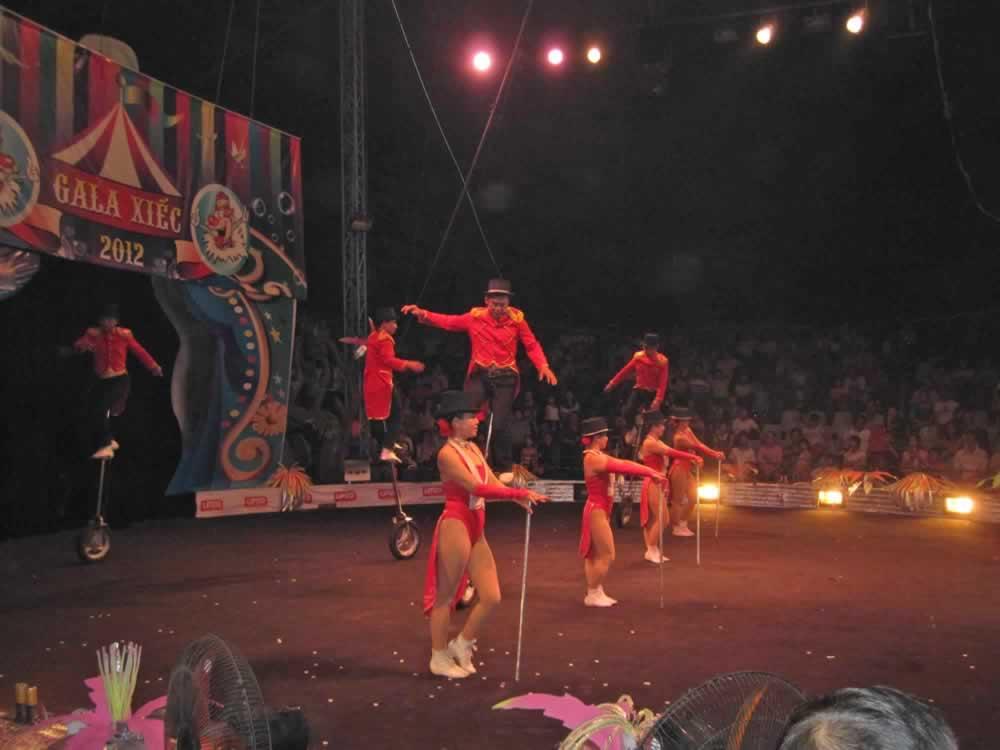 IMG 8201 circus gala