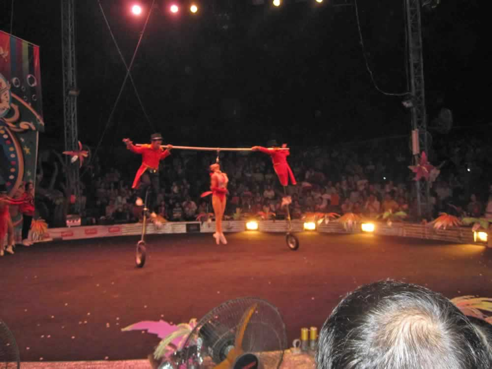 IMG 8203 circus gala