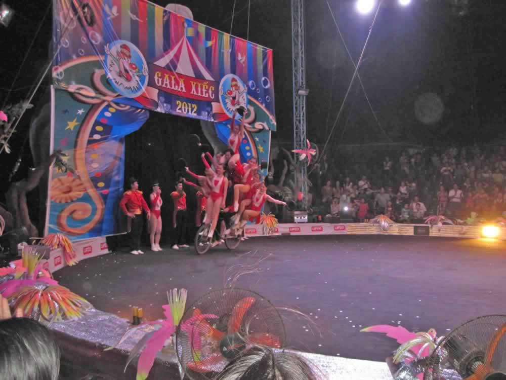 IMG 8205 circus gala