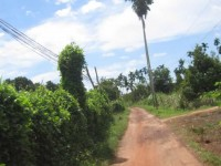 Kampot134 200x150 Kampot gallery